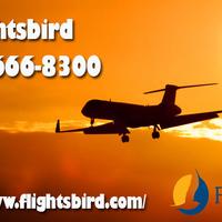 Get UPTO 70% off on online flight booking